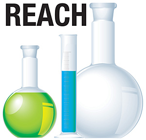 reach_logo